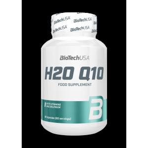 H2O Q10 60 cápsulas 100 mg